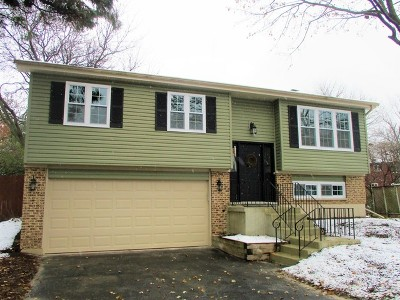 Naperville Single Family Home New: 5s729 Steeple Run Drive