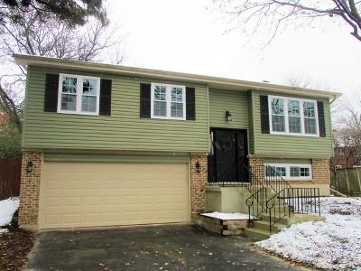 Naperville IL Single Family Home New: $367,500