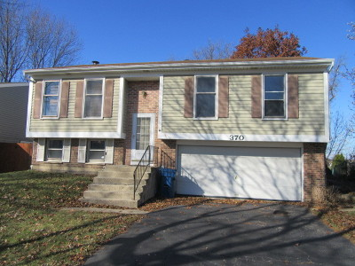 Roselle Single Family Home For Sale: 370 Norman Lane