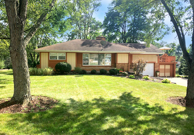 Downers Grove Single Family Home For Sale: 813 80th Street