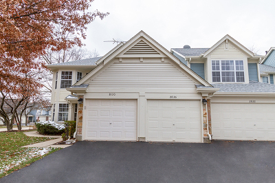 Schaumburg Condo/Townhouse For Sale: 2826 Belle Lane
