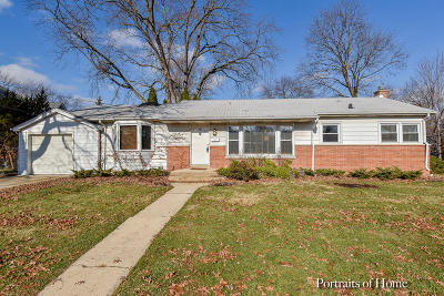 Naperville Heights Single Family Home For Sale: 209 West 12th Avenue