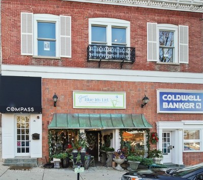 Hinsdale Commercial For Sale: 36 South Washington Street #201