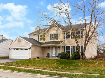 Carol Stream Single Family Home For Sale: 1108 Mountain Glen Way