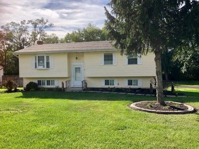 New Lenox Single Family Home New: 235 Roberts Road
