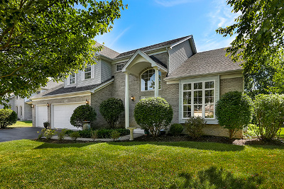 Naperville Single Family Home For Sale: 5340 Sand Lily Drive