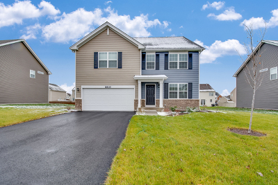 Joliet Single Family Home For Sale: 8404 Coop Avenue