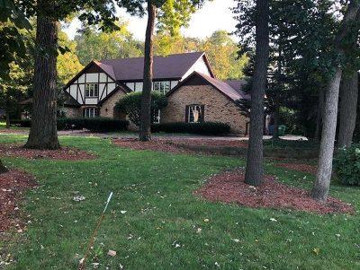 Homer Glen Single Family Home New: 12357 West Mackinac Road