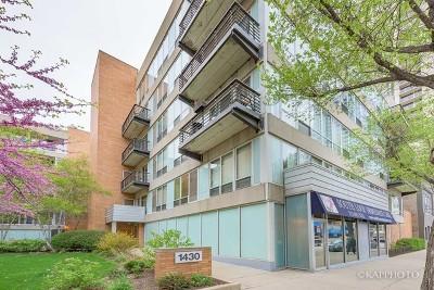 Condo/Townhouse For Sale: 1430 South Michigan Avenue #407