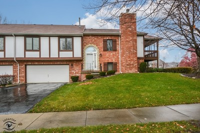 Orland Park Condo/Townhouse New: 11210 Cameron Parkway
