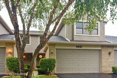 Palatine Condo/Townhouse For Sale: 529 North Walden Drive