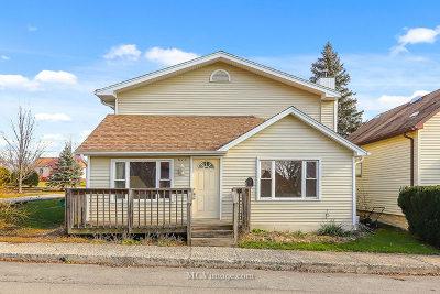 Lemont Single Family Home For Sale: 623 Ledochowski Street