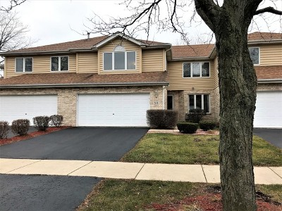 Tinley Park Condo/Townhouse For Sale: 7113 182nd Street