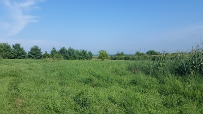 Ogle County Residential Lots & Land For Sale: 0000 North Triumph Road