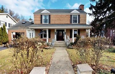 Mount Prospect Single Family Home For Sale: 413 South Hi Lusi Avenue