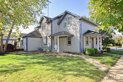 East Dundee Single Family Home For Sale: 202 North Street