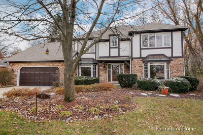 Oak Brook Single Family Home For Sale: 173 Green Leaf Drive
