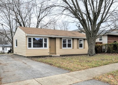Orland Hills Single Family Home For Sale: 16791 Haven Avenue