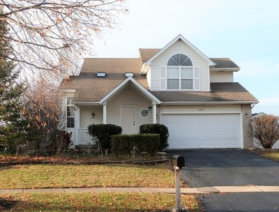 Lockport Single Family Home For Sale: 2515 Northlake Court