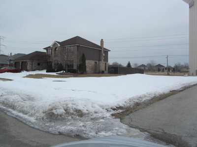 Tinley Park Residential Lots & Land For Sale: 17801 Cloverview Drive