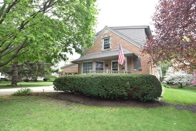 Lake Zurich Single Family Home New: 21359 West Starry Lane