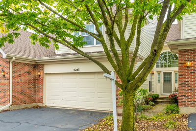 Hoffman Estates Condo/Townhouse For Sale: 2223 Seaver Lane