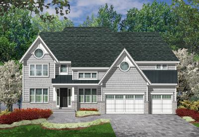 Palatine Single Family Home For Sale: 4560 Fairfax Avenue