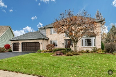 Naperville Single Family Home For Sale: 923 Leverenz Road