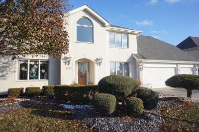 Orland Park Single Family Home For Sale: 18211 Autumn Ridge Drive