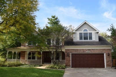 West Dundee Single Family Home For Sale: 2147 Hamilton Drive