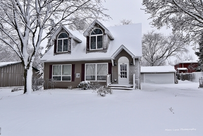 South Elgin Single Family Home For Sale: 540 Dean Drive