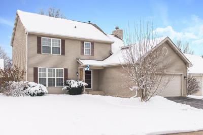Elgin Single Family Home For Sale: 1048 Clover Hill Lane