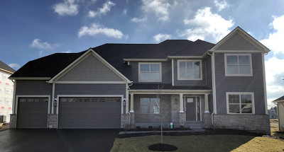 Elgin Single Family Home For Sale: 3618 Wetlands Drive