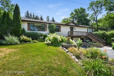 Barrington Single Family Home For Sale: 401 South Street