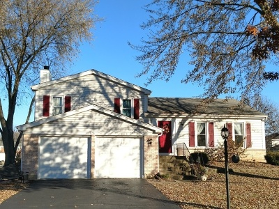 Roselle Single Family Home Price Change: 125 Chatham Lane