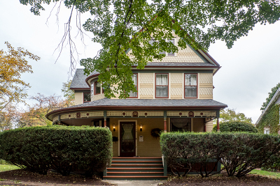 Naperville Single Family Home For Sale: 110 South Sleight Street
