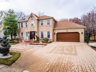 Bolingbrook Single Family Home For Sale: 743 Dunham Lane
