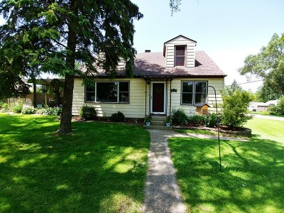 Lake In The Hills Single Family Home For Sale: 1323 Monroe Street