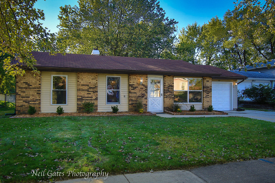 Bolingbrook Single Family Home For Sale: 169 Mayfield Drive