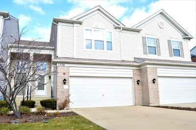 Streamwood Condo/Townhouse For Sale: 1528 Yellowstone Drive