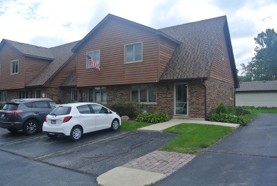Naperville Condo/Townhouse For Sale: 469 Valley Drive #6