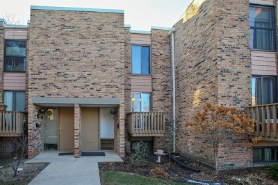 Schaumburg Condo/Townhouse For Sale: 1609 Waxwing Court