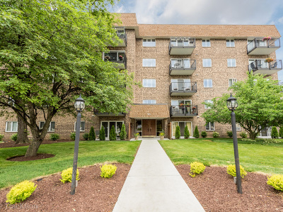 Downers Grove Condo/Townhouse For Sale: 907 Curtiss Street #203