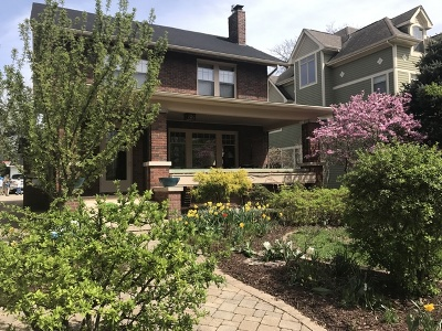 Naperville Single Family Home For Sale: 336 South Sleight Street