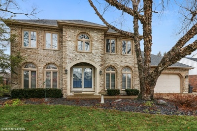 Orland Park Single Family Home For Sale: 8658 Butterfield Lane