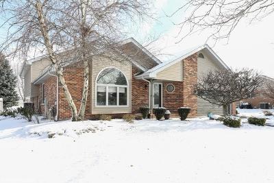 Mokena Single Family Home For Sale: 19505 Fiona Avenue