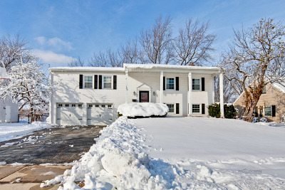 Schaumburg Single Family Home For Sale: 134 Cloverdale Lane