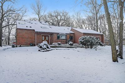 Naperville Single Family Home For Sale: 8511 Una Avenue