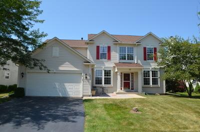 Elgin Single Family Home For Sale: 1220 Umbdenstock Road