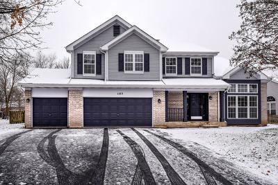 Bartlett Single Family Home For Sale: 1123 Stonegate Court